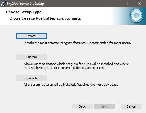 MySQL setup type